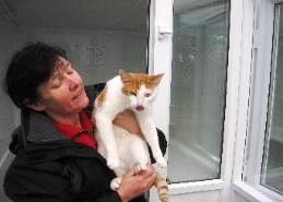 Martlets Cattery Owner